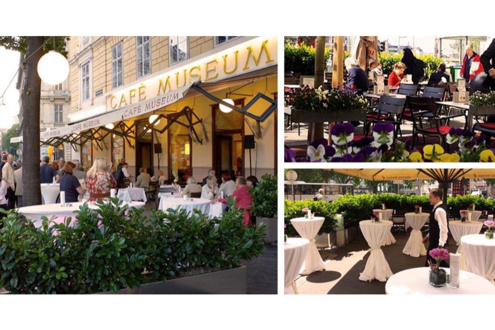 cafe museum 10